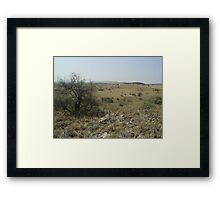 Savannah, Cradle of Humankind, Gauteng, South Africa Framed Print