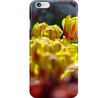 Yellow Red iPhone Case/Skin