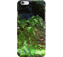 The Hidden Land - The Valley iPhone Case/Skin