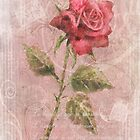 Long Stemmed Rose by arline wagner