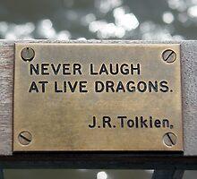 Tolkien by Paul  Green
