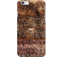 The Hidden Land - Sailing iPhone Case/Skin