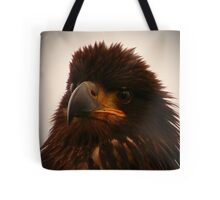 Young Bald Eagle ll Tote Bag