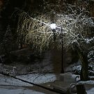 Lonely Bank Under Street Lamp by Oleksii Rybakov