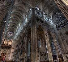 Notre Dame Variation - Notre Dame Amiens by Gavin Poh