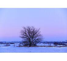 Winter evening bliss Photographic Print