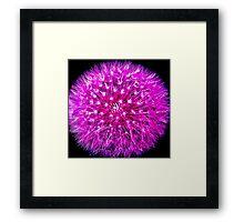 Lilac Dreams 2 Framed Print