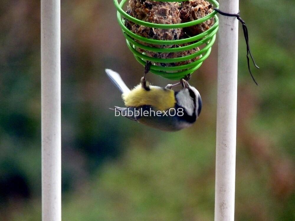 The acrobat by bubblehex08