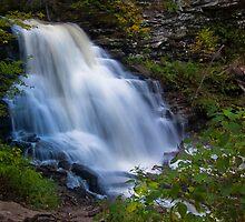 Erie Falls at Ricketts Glen by Murph2010