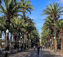 Alicante, Explanada de España by Wrayzo