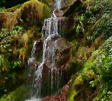 Hestercombe Waterfalls HDR by Dean Messenger