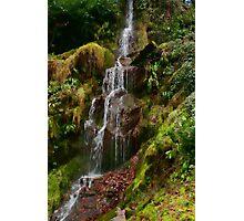 Hestercombe Waterfalls HDR Photographic Print
