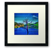 Dead tree in lake Framed Print