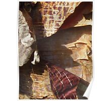 peeling bark Prayer Flags Poster