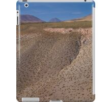 Living in the low lands iPad Case/Skin