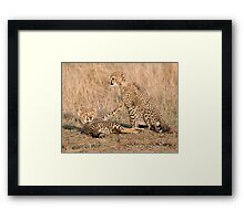 Wait Just One Minute ! Framed Print
