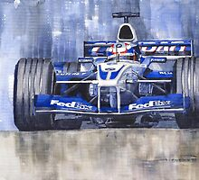 Williams BMW FW24 2002 Juan Pablo Montoya by Yuriy Shevchuk