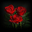 Red Roses II by Sandy Keeton