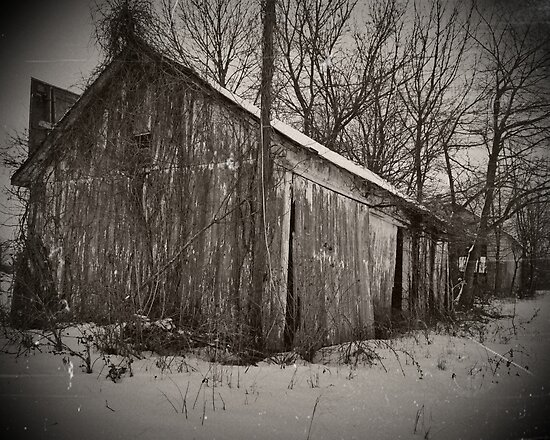 Old Shed in Snow by ericseyes