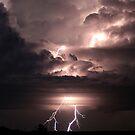 Lightning by Pene Stevens