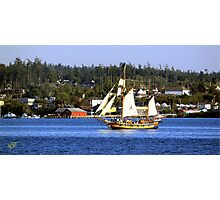 Tall Ships in Coupeville Photographic Print