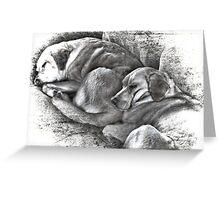 To Sleep Perchance to Dream Greeting Card