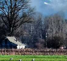 Skagit Barn Digital Painting by Rick Lawler