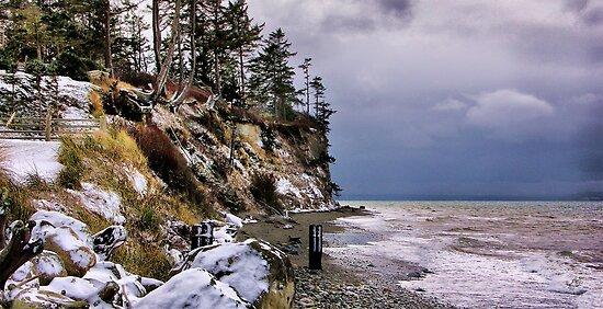 West Beach Snow by Rick Lawler