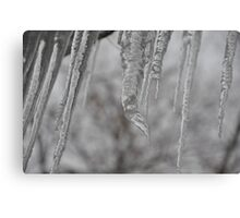 Icicles and an elephant trunk Canvas Print