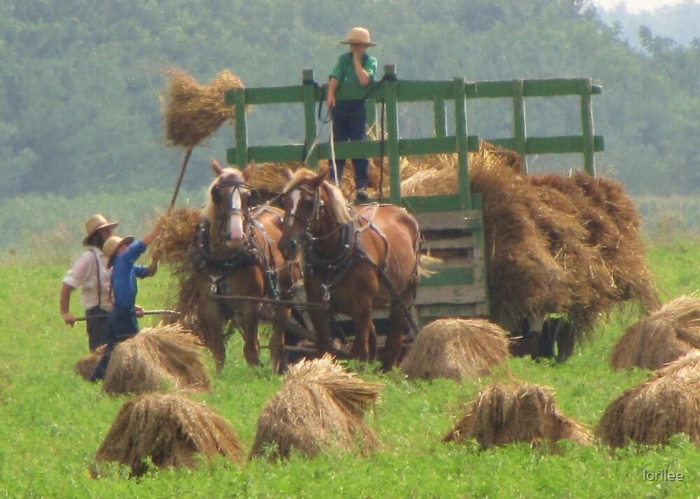 Pitching Hay by lorilee
