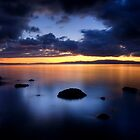 Coromandel Blue by Michael Treloar