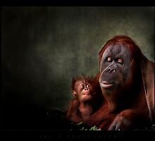 social moments IV by ArtX