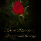 How Do I Love Thee by Catherine Hamilton-Veal  ©