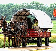 A Team of Small Mules Pulling a Wagon by barnsis