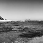 Lighthouse Beach B&W Pano by Tam  Locke