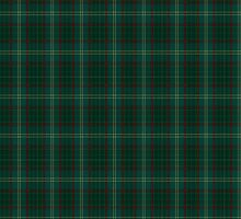 00300 Armagh County District Tartan  by Detnecs2013