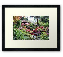 Coloured Garden Framed Print