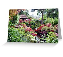 Coloured Garden Greeting Card