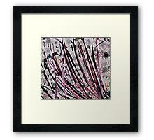 Pink Poles- Digital Abstract Painting Framed Print