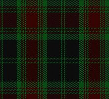 00302 Carlow County District Tartan  by Detnecs2013