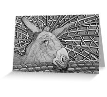231 - DONKEY DESIGN - DAVE EDWARDS - INK - 2011 Greeting Card