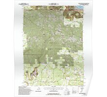USGS Topo Map California Beaver Mountain 100272 1993 24000 Poster