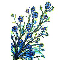 Forget-Me-Not - Flowers Photographic Print