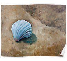 Seashell and sand study II Poster