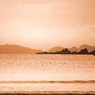 Warm Coast by Anthony Thomas
