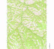 USGS Topo Map Oregon Bingham Springs 279044 1963 24000 by wetdryvac