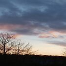 St. Lawrence County Sunset by linmarie