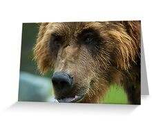 Grizzly mood Greeting Card