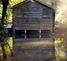 The boat shed by Melissa Dickson