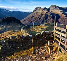Over the stile and on to Lingmoor fell by Shaun Whiteman